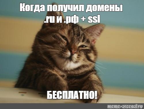 подарок, ssl, .ru, .рф
